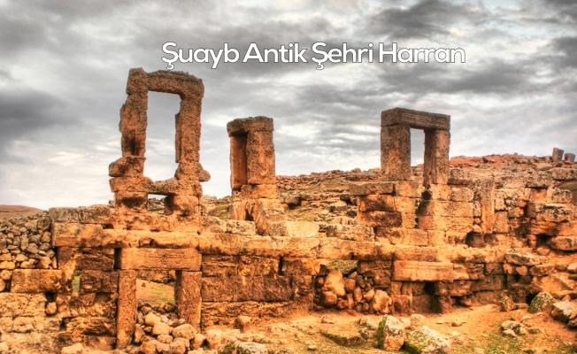 Şuayb Antik Şehri Harran